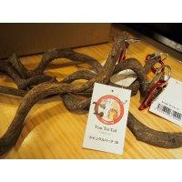 TinyTotTailオリジナル ジャングルパーチ 30cm, 60cm (止まり木)